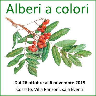 alberi a colori Daniela Guido