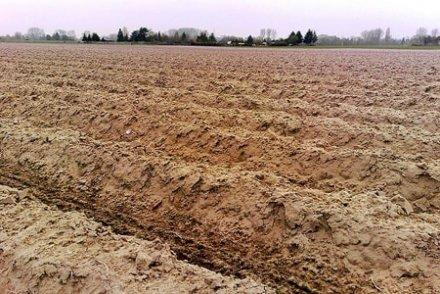 Pollué, labouré, oublié : le sol français est en train de disparaître