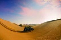 Discover Emirates Terraficionados