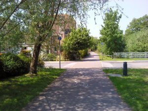 Housing scheme making the most of natural features and species