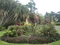 Queens Gardens Townsville City|Tropical Townsville ...