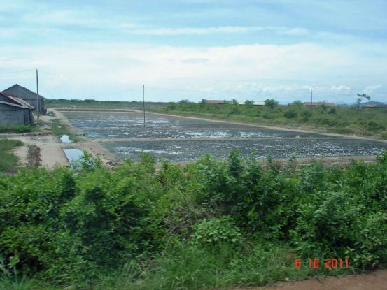 Kep-Kampot Salt Fields.Both salt and pepper are produced in the Kampot Province