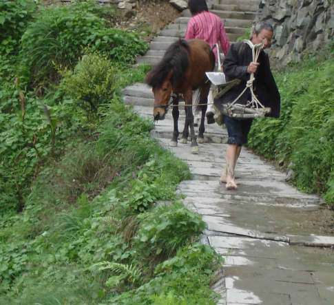 Villager leading horse and carrying hoeing implement