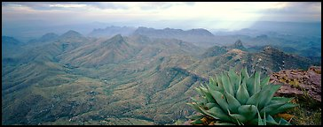Big Bend National Park  panoramic pictures  US National