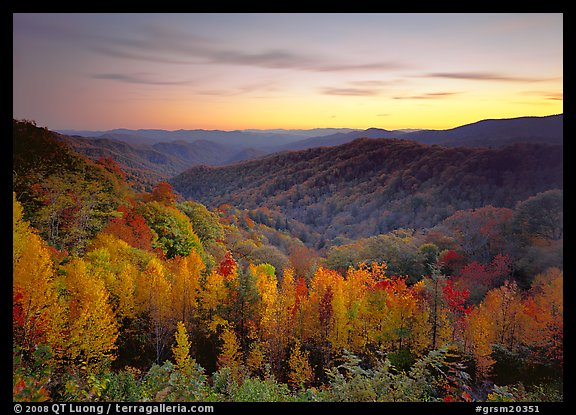 Fall In The Smokies Wallpaper Picture Photo Row Of Trees Valley And Ridges In Fall