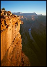 Cliff and Colorado River from Toroweap, sunrise. Grand Canyon National Park ( color)