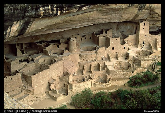 PicturePhoto Cliff Palace sheltered by rock overhang