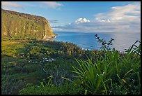 Akaka Falls Wallpaper Waipio Valley Pictures Oceania Stock Photos Fine Art
