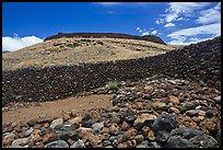 Akaka Falls Wallpaper Kona Coast Pictures Oceania Stock Photos Fine Art