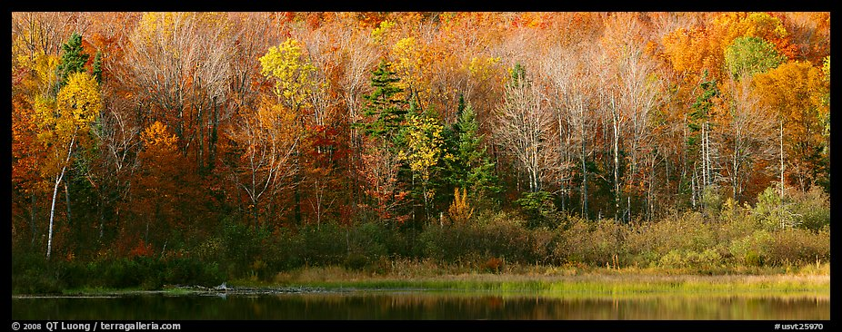 Panoramic Wallpaper Fall Panoramic Picture Photo Forest Edge In Autumn Vermont