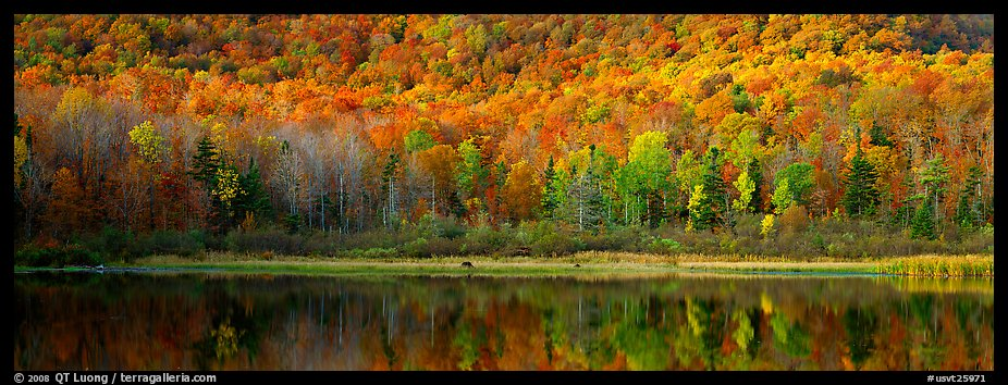 Vermont Wallpaper Fall Panoramic Picture Photo Hillside Forest And Pond In The