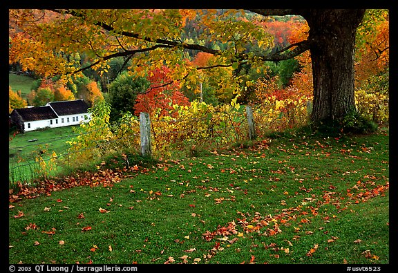 Vermont Wallpaper Fall Picture Photo Peacham Vermont New England Usa