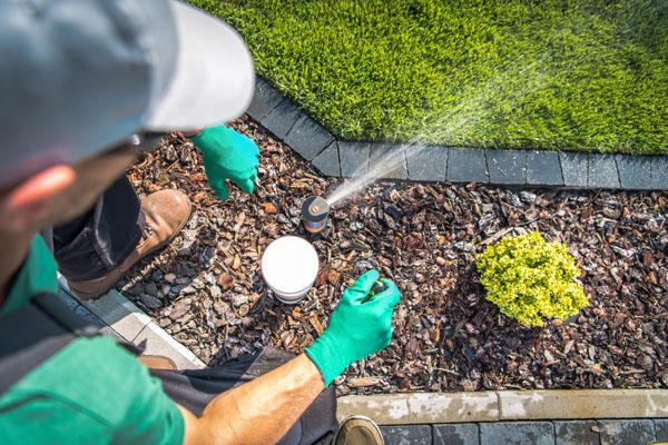 arrosage la londe les maures jardinier 83
