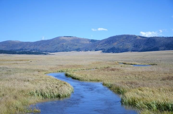 Howling, Yipping & Road Dancing at Valles Caldera National Preserve || TERRAGOES.COM