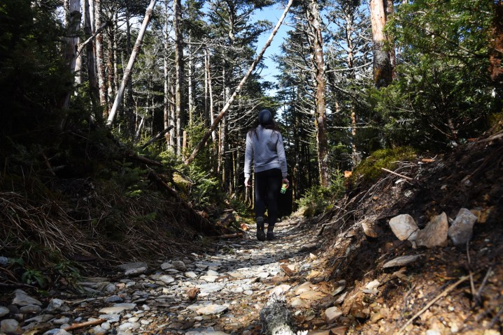 Mount LeConte via the Alum Cave Trail in the Great Smoky Mountains || terragoes.com