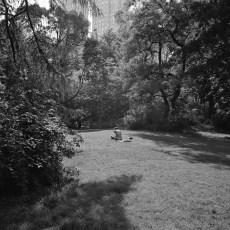 The Park 18 (2013)