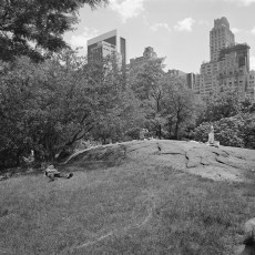 The Park 38 (2013)