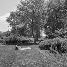 The Park 51 (2012)