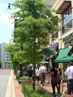 Ellsworth Streetscape