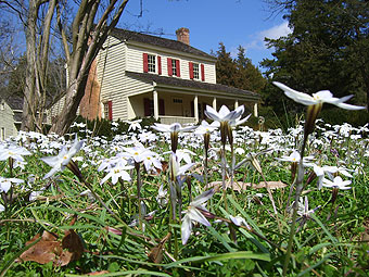Walnut Grove Plantation manor house