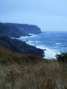 Storm surge on Fish Head.