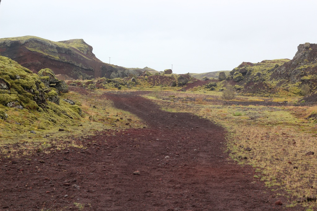 red earth, green moss