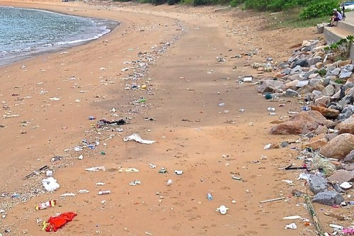 Too much plastic never makes it to landfills or recyclers.