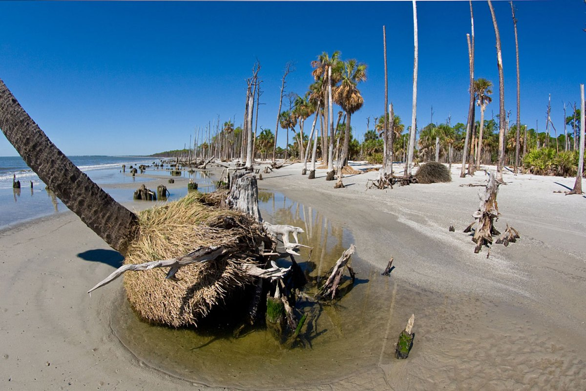 Receding beach. Photo by David Moynahan.