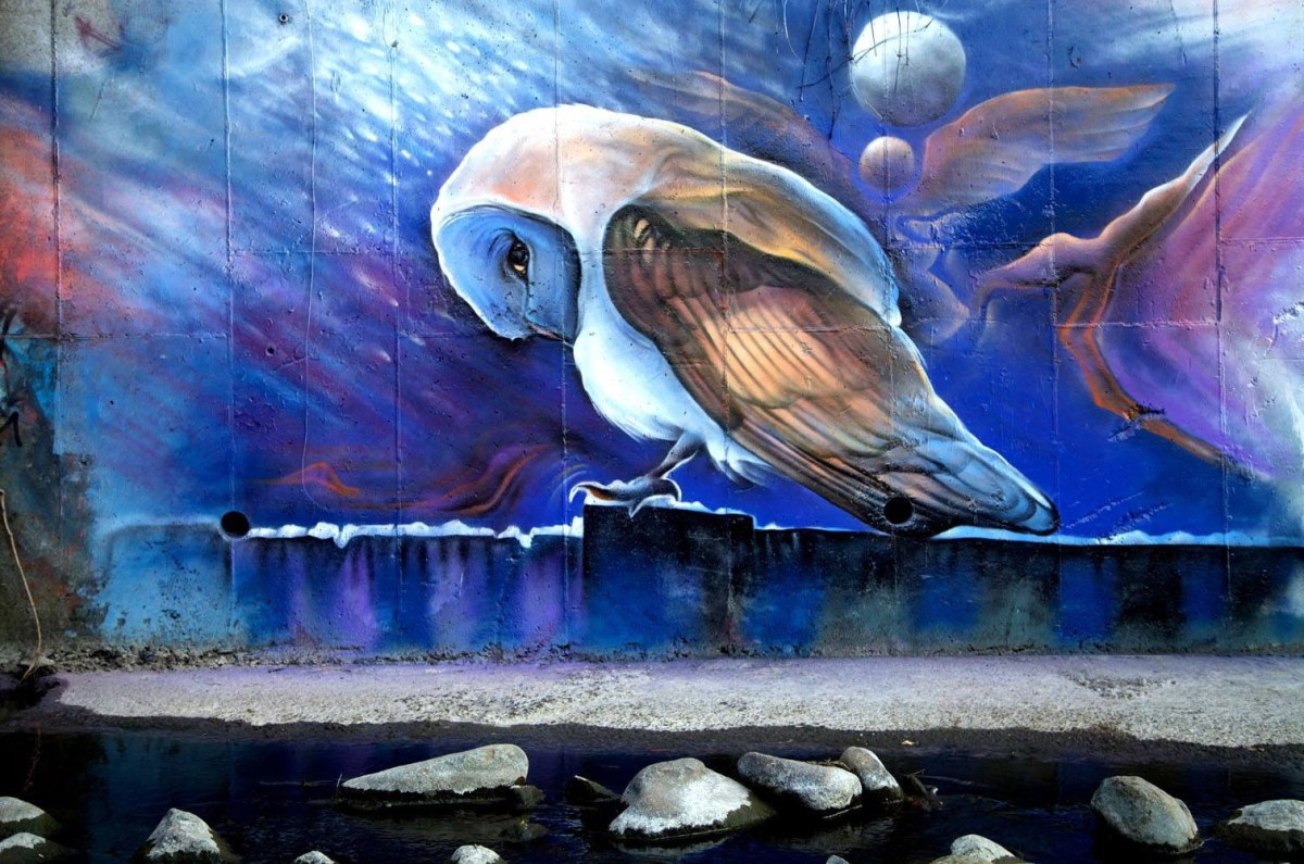 Wall art by Jake Stevens