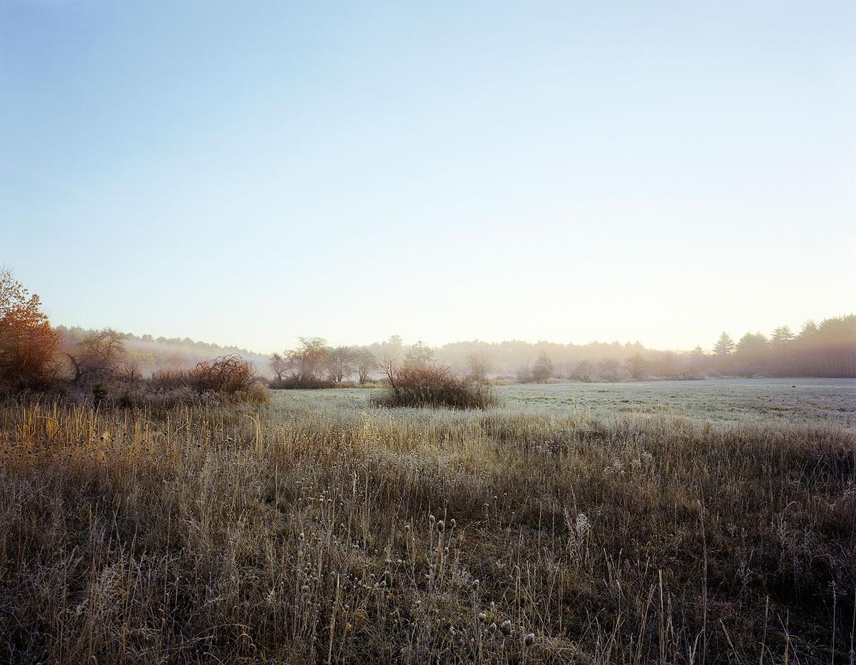 Untitled, 2003, by Barbara Bosworth.