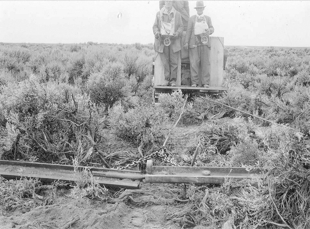 Historic photo of sage removal.