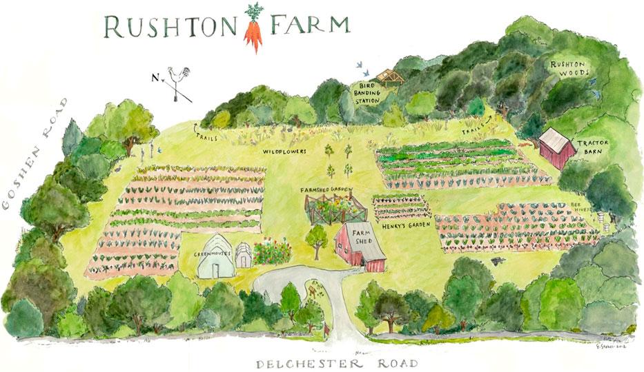 Rushton Farm