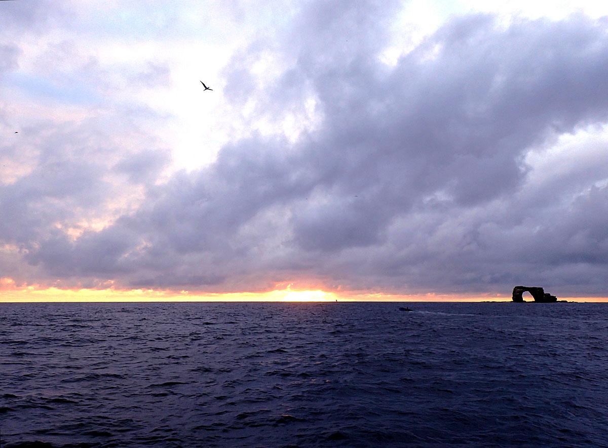 Darwin Island.