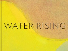 Water Rising, by Garth Evans and Leila Philip