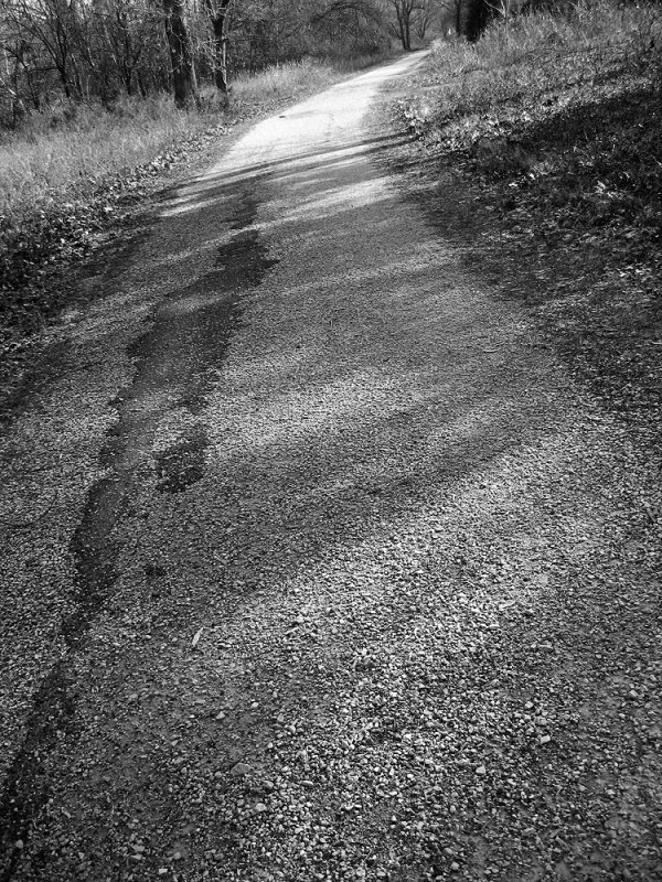 A path that parallels the Meramec River in Route 66 State Park. Photo by Jennie Goode.