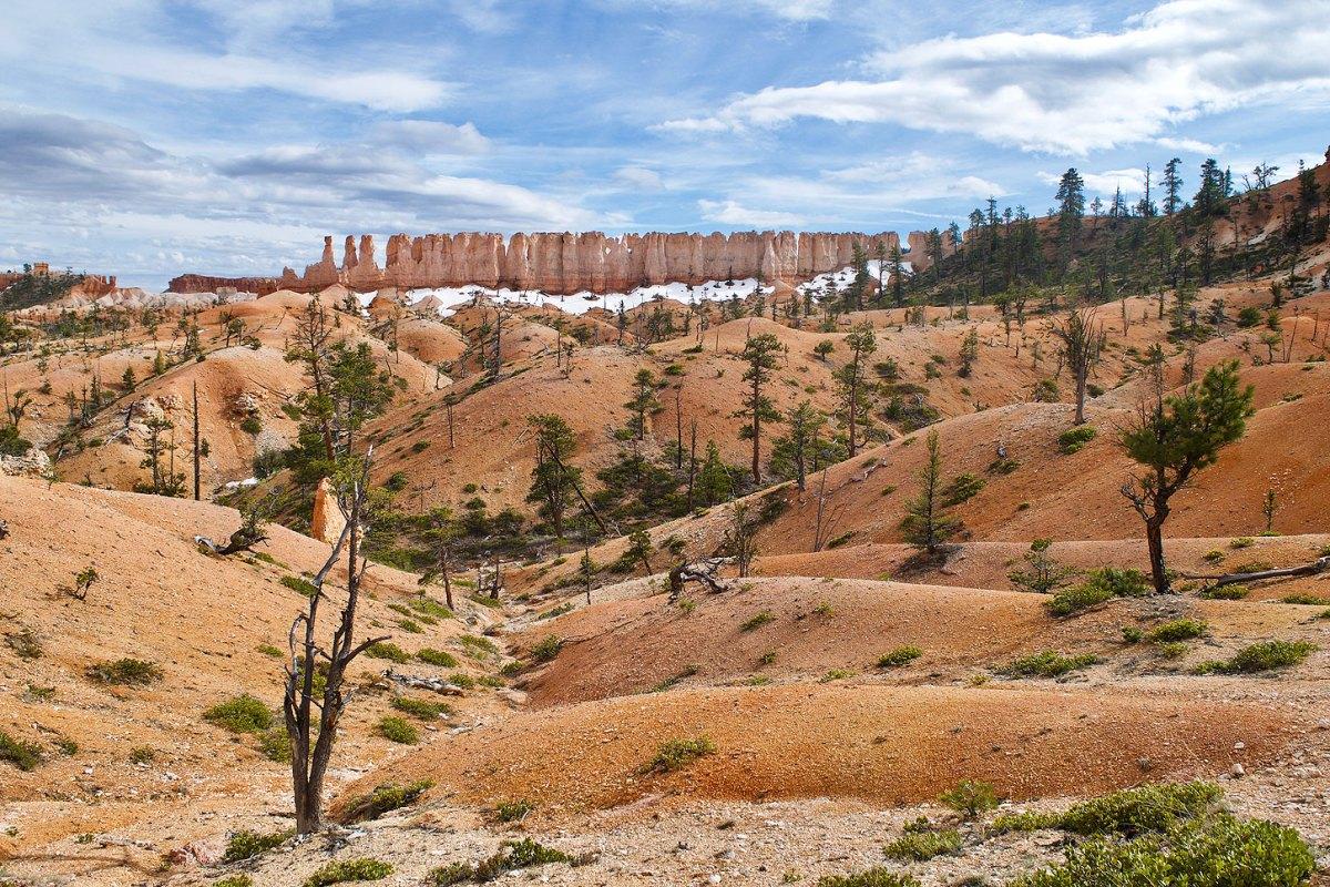 Bryce Canyon Epithalamium: Photo by Joel Long