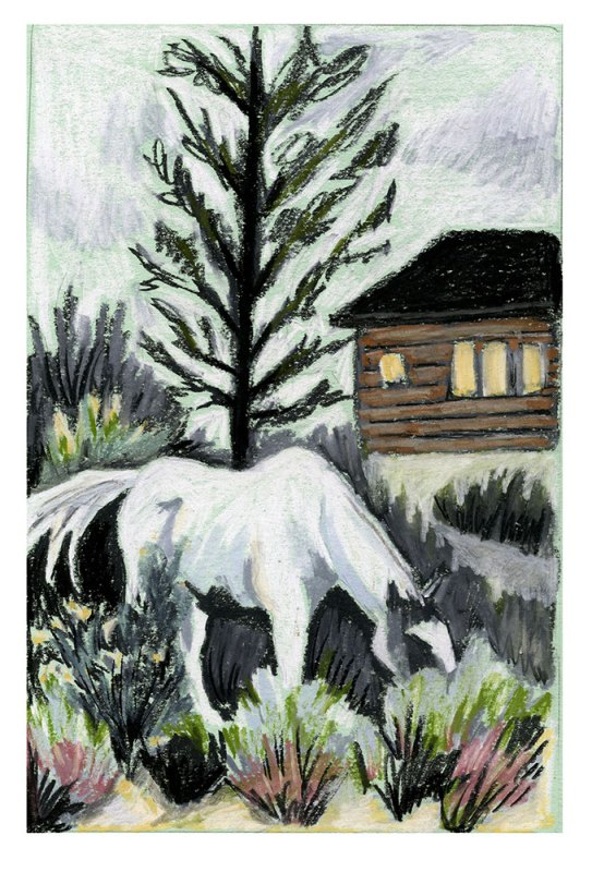 Horse and cabin. Image by Martha Park.