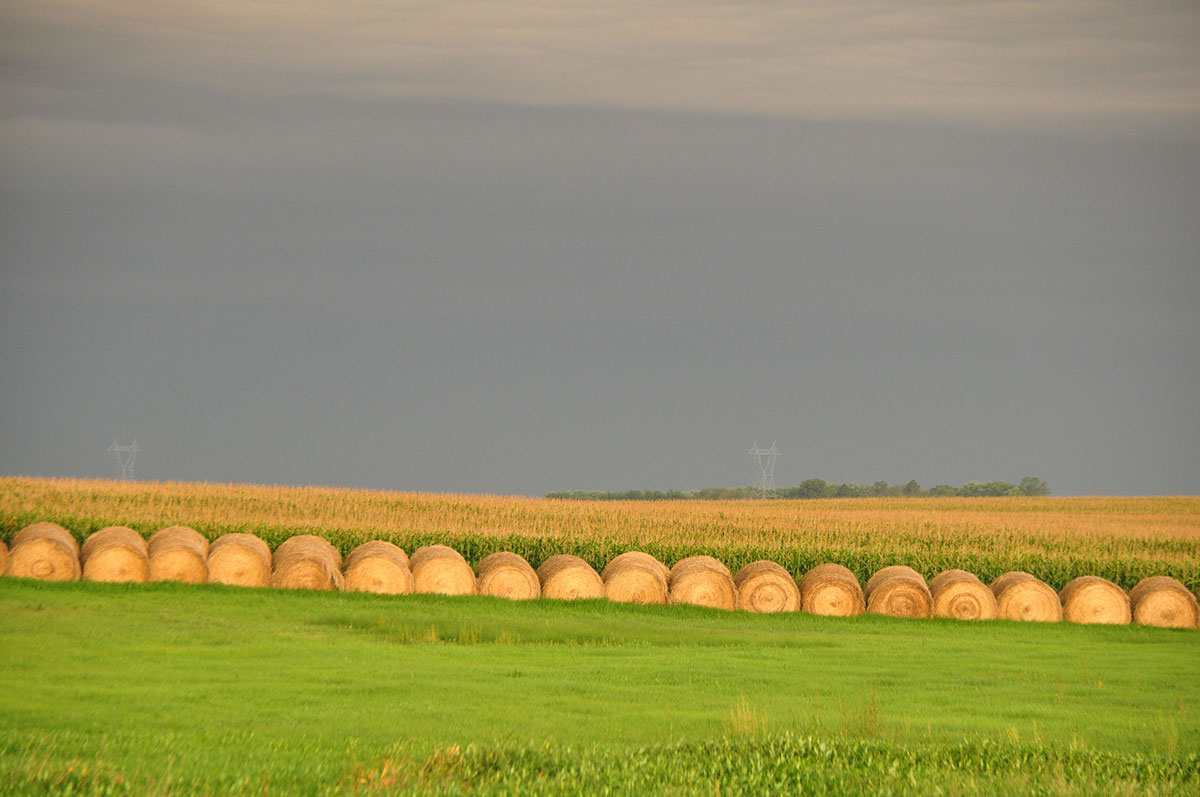 Farm in South Dakota with hay bales