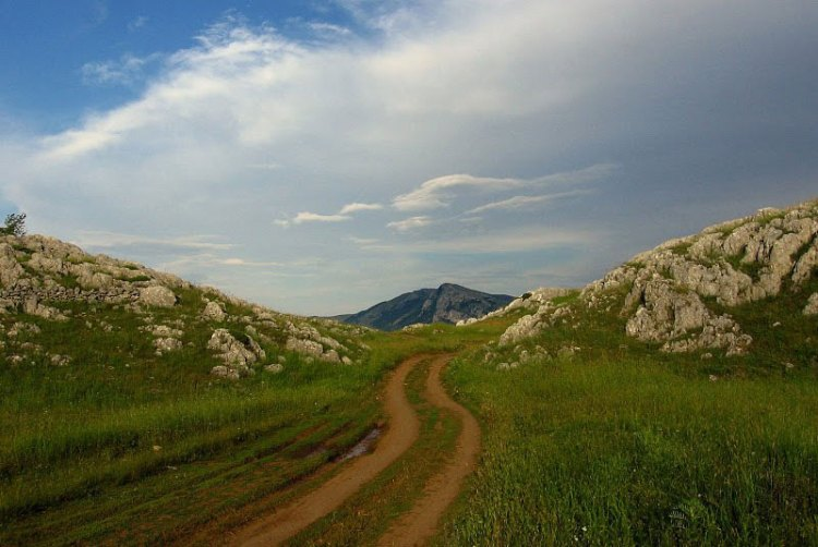 Path through the Karst country. Photo by Julian Hoffman.
