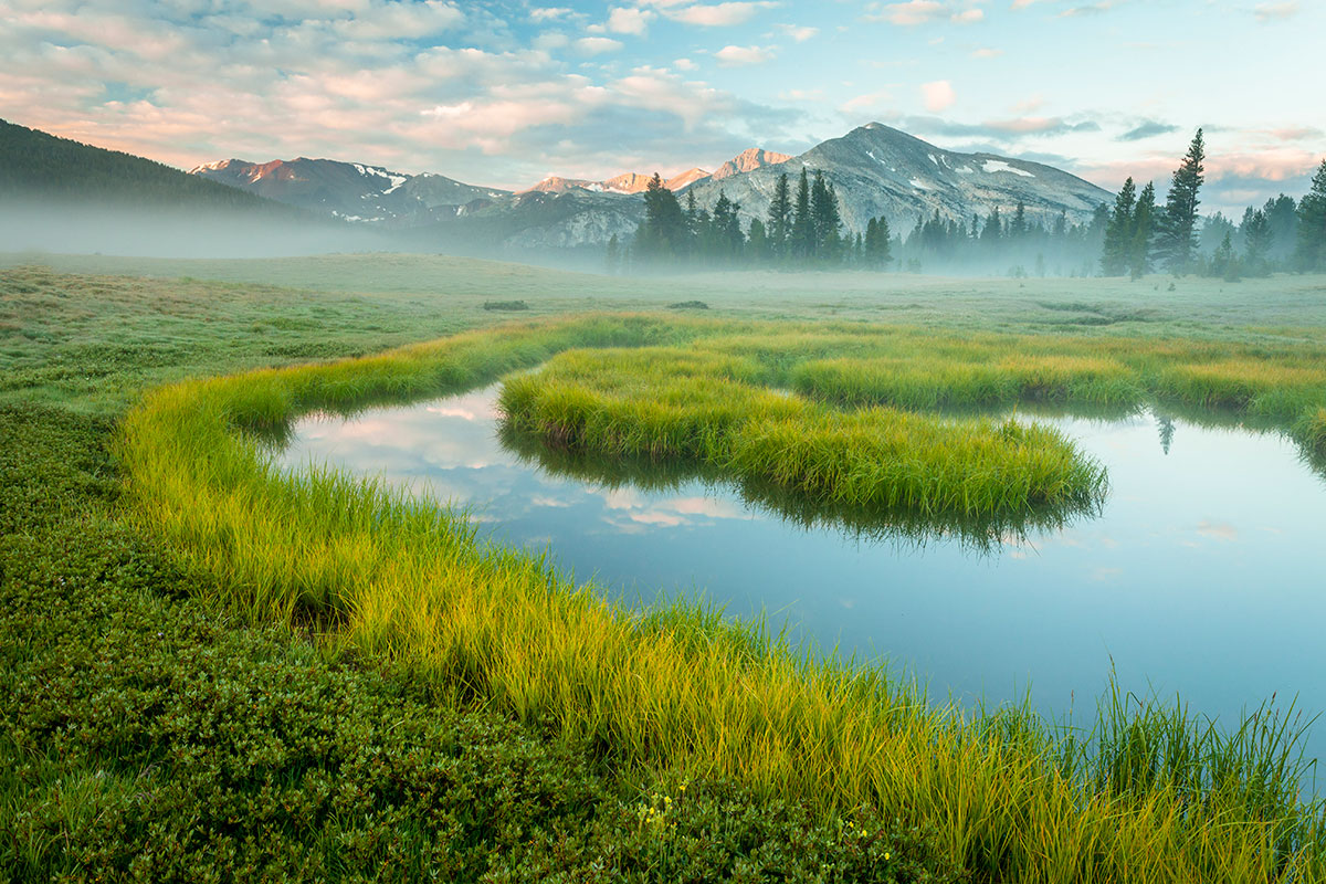 Early mist in Dana Meadows. Photograph by Robb Hirsch.