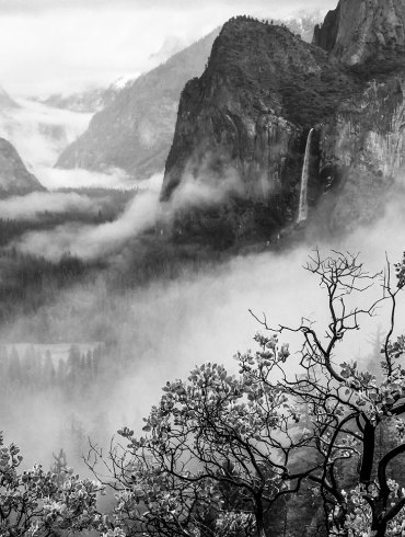 The Influence of Art at Yosemite by James McGrew