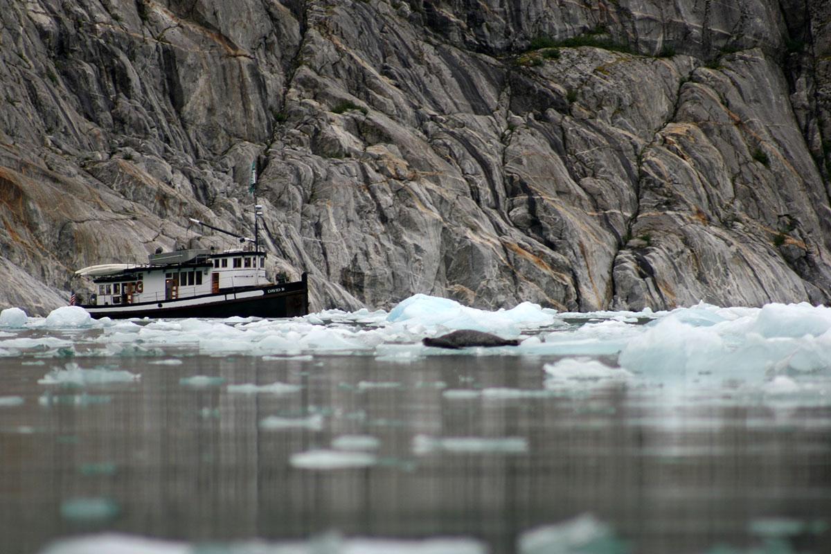 The Liseron among sea ice