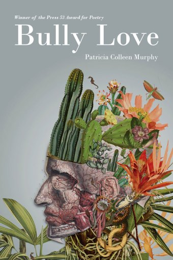 Bully Love, poems by Patricia Colleen Murphy