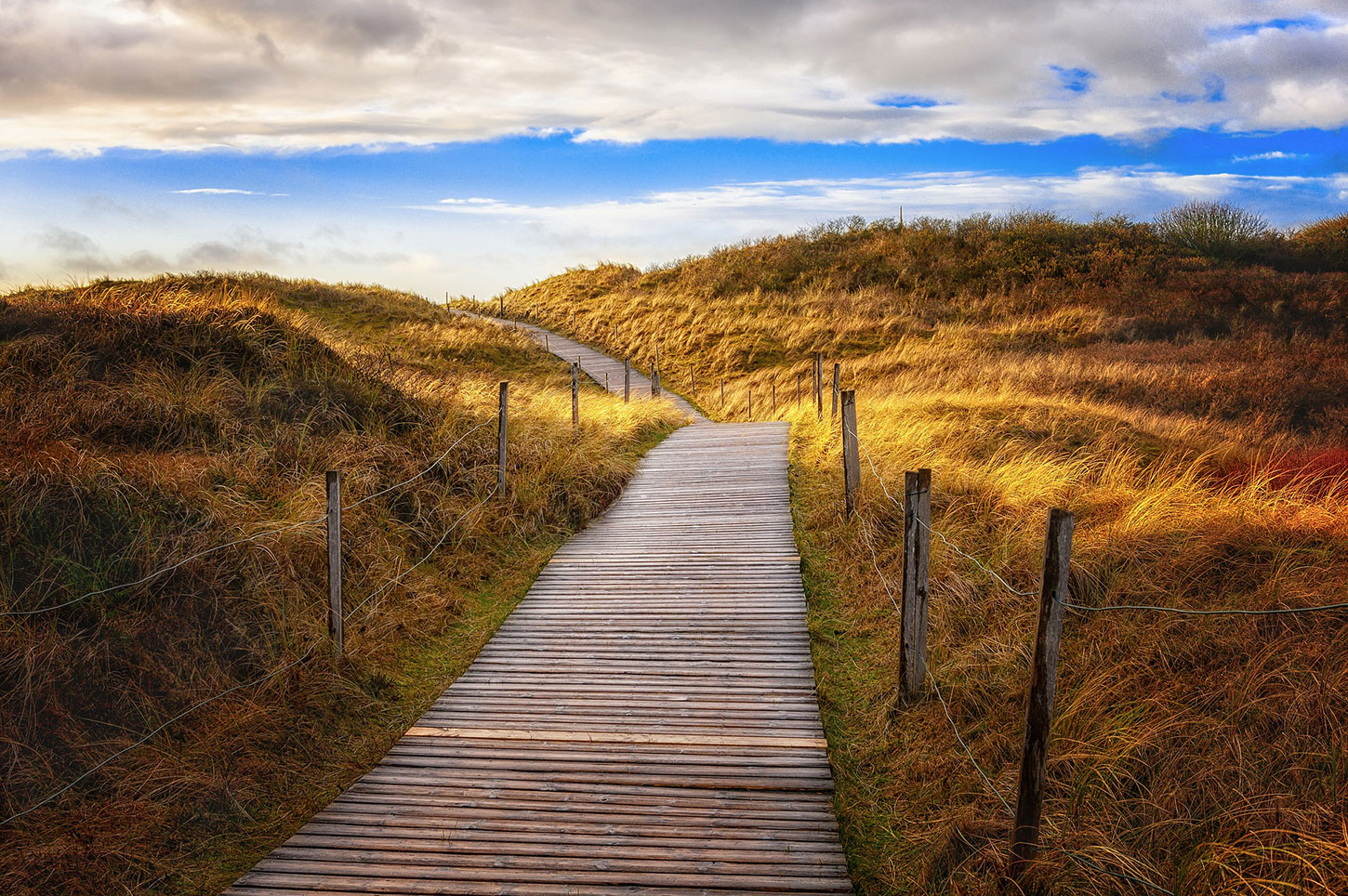 Walkway over the dunes at a beach