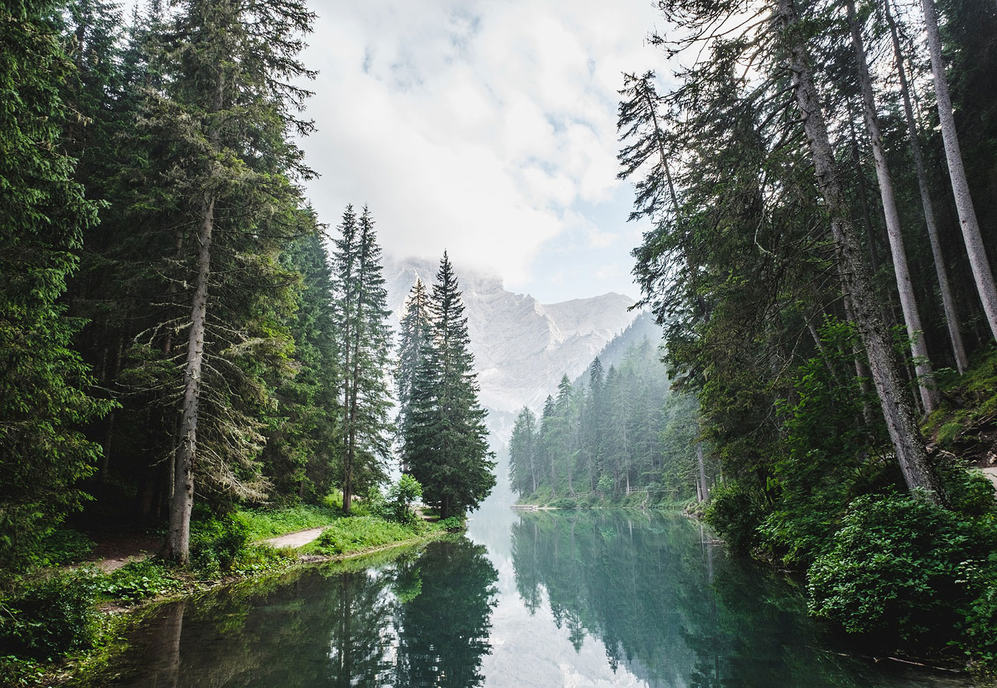 River, forest, and mountain