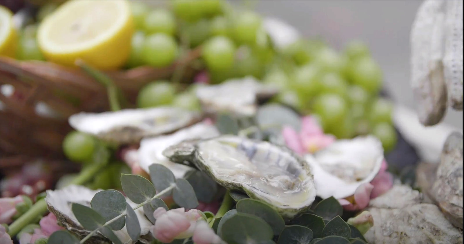 Oysters on the half shell (with grapes)