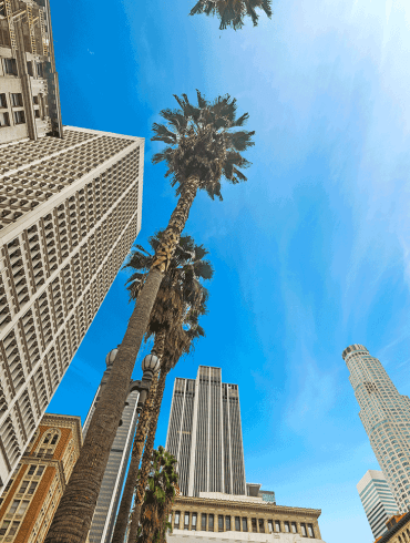Looking up in downtown Los Angeles