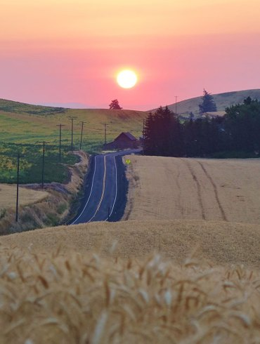 Sunrise over the Palouse Priaire, with road and barn