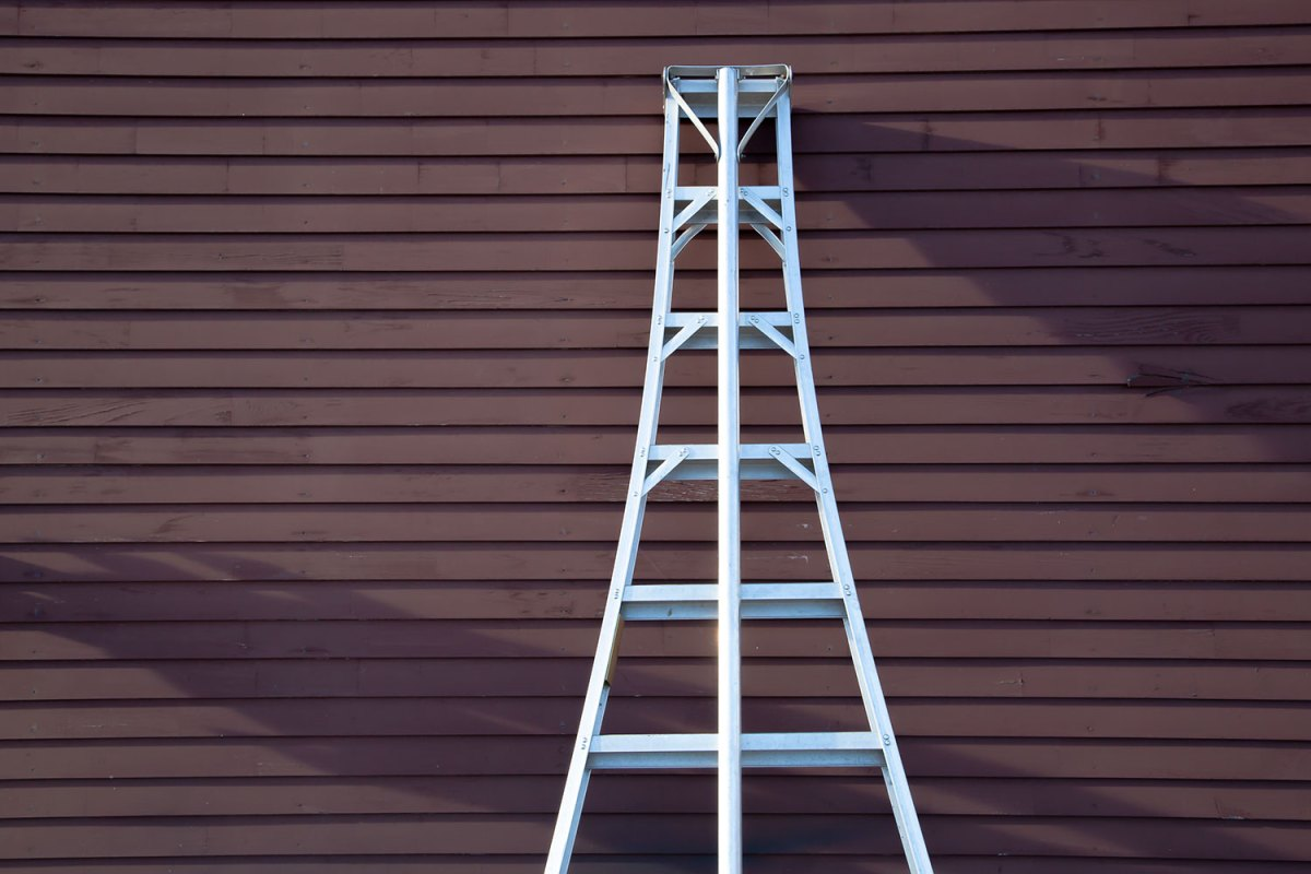 A ladder at Mack's Apples