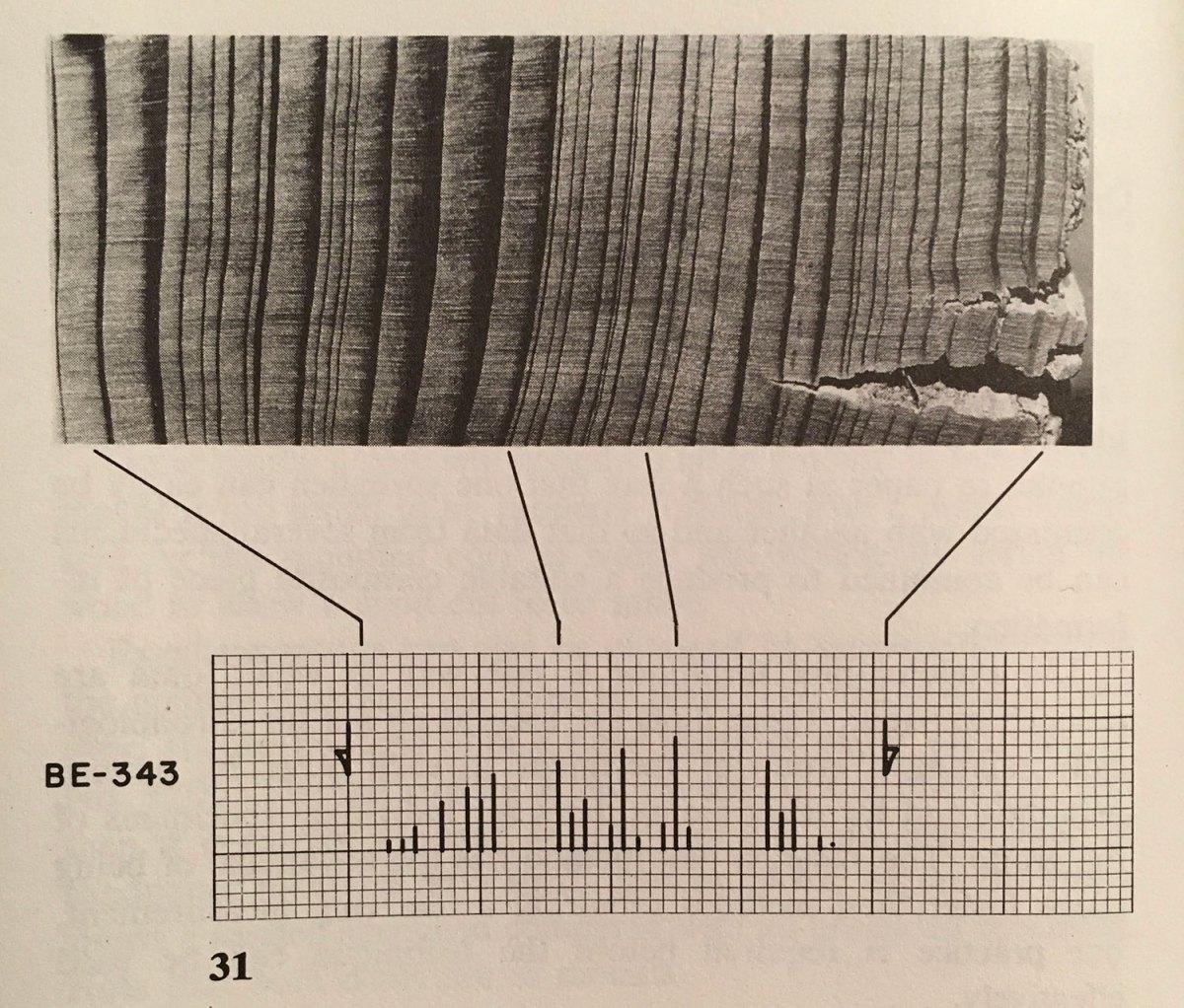 Tree-ring plot.